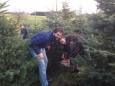 Weihnachtsbaumverkauf_001