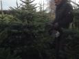 Weihnachtsbaumverkauf_006